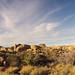 Jumbo Rocks Campground (154919)