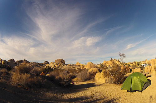 Jumbo Rocks Campground (155024)