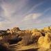 Jumbo Rocks Campground (155029)