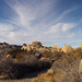 Jumbo Rocks Campground (155034)
