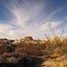 Jumbo Rocks Campground (155048)