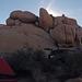 Jumbo Rocks Campground (155323)