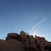 Jumbo Rocks Campground (155328)