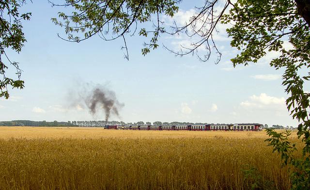 Bahn im Feld