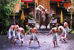 Bali.  Batu Bulan, Barong Tanz 9. ©UdoSm
