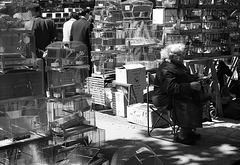 J'ai pris cette photo avec mon Zorki 4 , en 1965 , au marché aux oiseaux , à Paris . Je l'aime particulièrement .