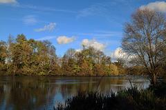 Hier , le long du Loiret