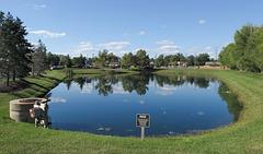 "A hospital pond! A ""medical & business park"" pond."