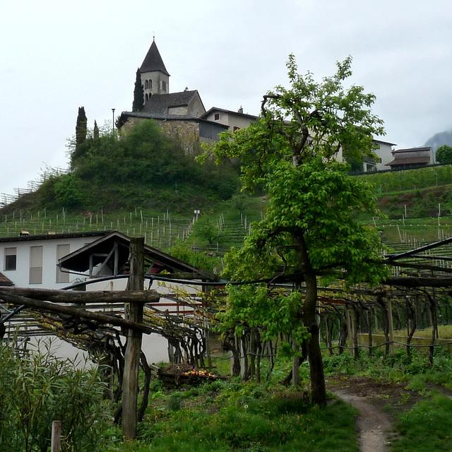 Kastelaz über Tramin , Südtirol