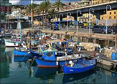 Il porto della pesca (018)