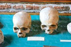 Huis Bergh 2014 – Skulls from the Eighty Years' War