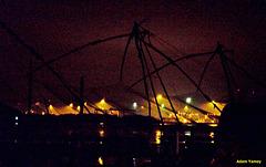 Night nets