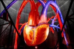 "♡ ♡ Jaume Plensa, The Secret Heart:  ""I can hear your heartbeat"" ♡ ♡"