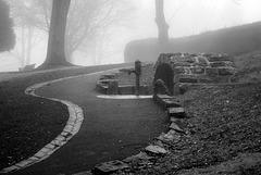 Shear's Well in the Fog
