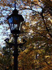 Herbst in Dresdens Großem Garten 10