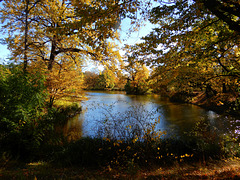 Herbst in Dresdens Großem Garten 11