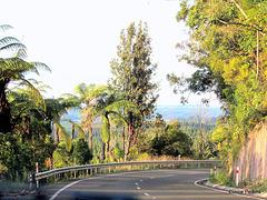 On Scott Road
