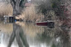 Stille am Altwasser