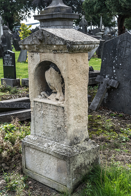 PHOTOGRAPHING OLD GRAVEYARDS CAN BE INTERESTING AND EDUCATIONAL [THIS TIME I USED A SONY SEL 55MM F1.8 FE LENS]-120250