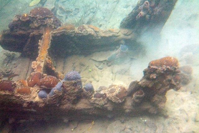 World War II Wreck