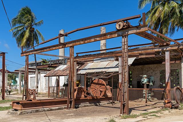 rusty lathe and 2 palms