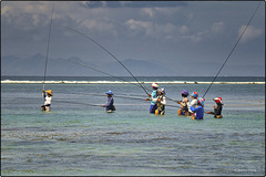Pêcheurs professionnels à la ligne