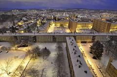 BELFORT: 2012.12.27 Il a neigé la nuit .01
