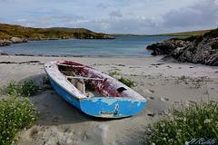 Anyone for a sail?