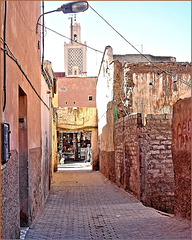 In the streets of Marrakech