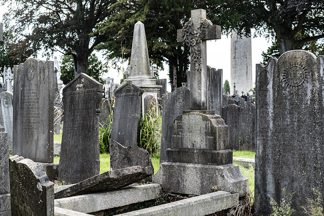 PHOTOGRAPHING OLD GRAVEYARDS CAN BE INTERESTING AND EDUCATIONAL [THIS TIME I USED A SONY SEL 55MM F1.8 FE LENS]-120239