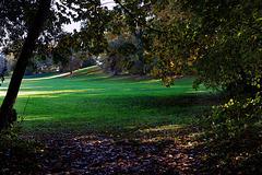 Photographier l'automne , le petit plaisir de cette saison