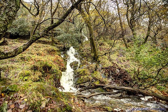Glendalough 33