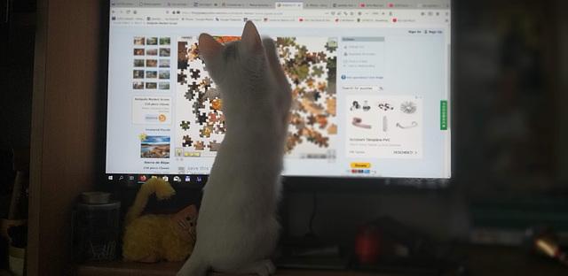 Mimi loves puzzles