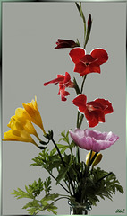 Sommerblumen Aquarell. Acquerello di fiori di estate.  Summer flowers watercolour. ©UdoSm