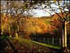 L'automne enchanté au bout de mon pré HFF