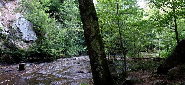 Cascades Cerney