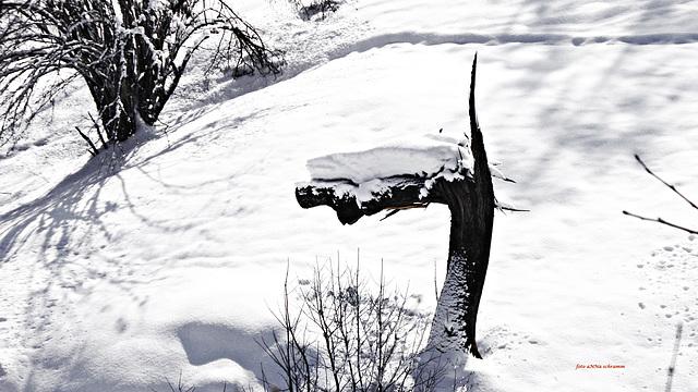 Märchenhafte Gestalten im Schnee