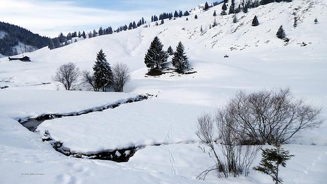 mit Schnee-Schuh unterwegs