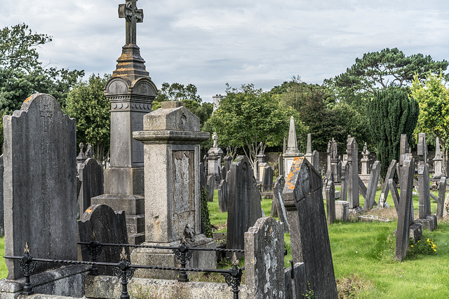 PHOTOGRAPHING OLD GRAVEYARDS CAN BE INTERESTING AND EDUCATIONAL [THIS TIME I USED A SONY SEL 55MM F1.8 FE LENS]-120235