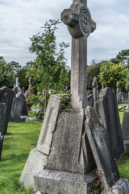 PHOTOGRAPHING OLD GRAVEYARDS CAN BE INTERESTING AND EDUCATIONAL [THIS TIME I USED A SONY SEL 55MM F1.8 FE LENS]-120231