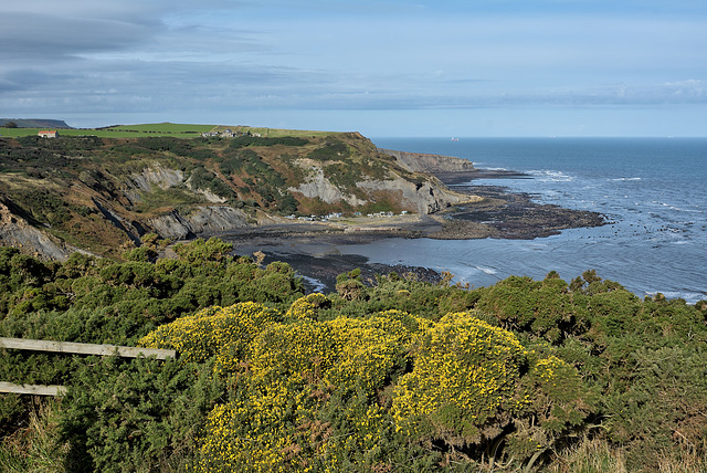 Port Mulgrave from the south