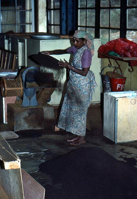 Arbeiterin bei der Arbeit des Teeblätter absiebens. Das ist die letzte Qualitätssufe, die dann noch für die Teebeutel verwendet wird.