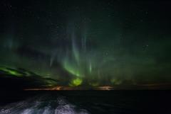 Starry aurora skies