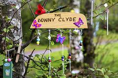 'The Bonny Clyde'