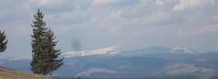 La Montaro Suhardului, Orientaj Karpatoj