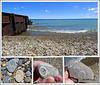 Fossils at the lake shore.