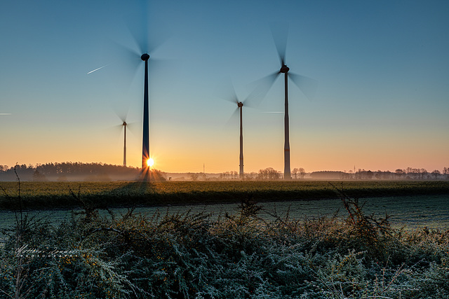 Sonnenaufgang Windpark Haselünne Flechum