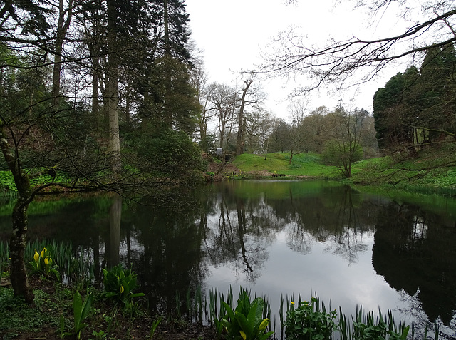 The Stable Pond