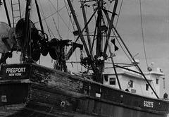 Fishing boat - Print