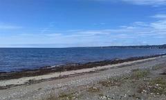 Bleu sur bleu sur plage déserte....